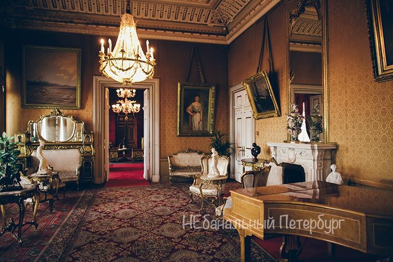 Экскурсия в дом ученых(Владимирский дворец)