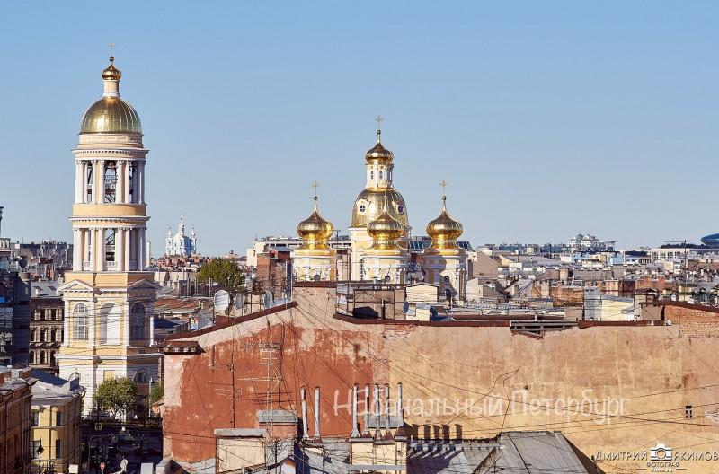 крыши петербурга владимирский собор